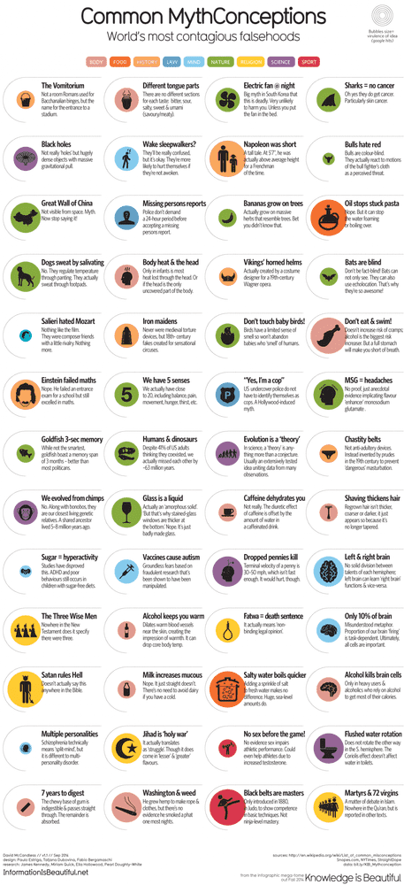 1276_common-mythconceptions_oct22nd.png