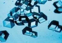 200px-Insuline_crystallen.jpg