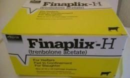 260px-Finaplix-Hintervet.jpg