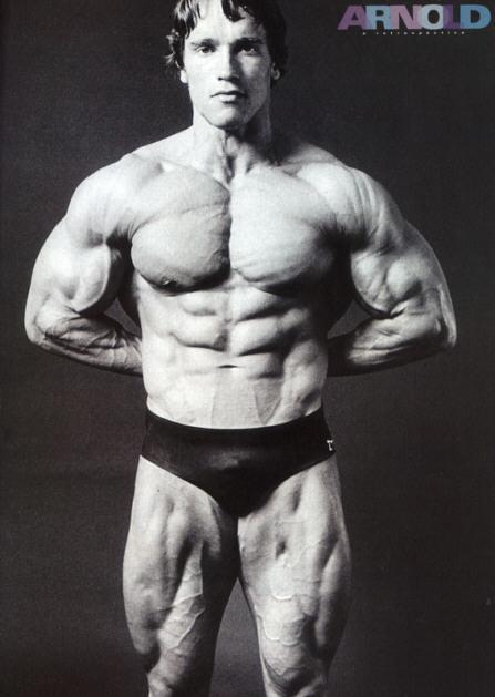 Arnold0107.jpg