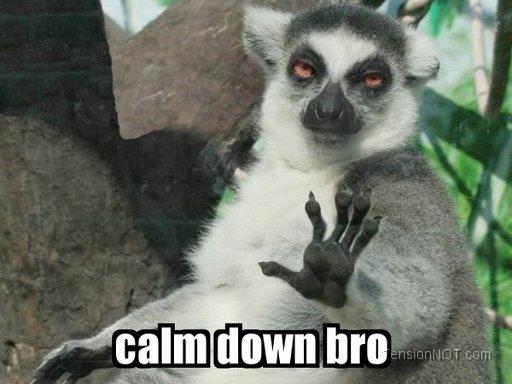 Calm-Down-Bro.jpg