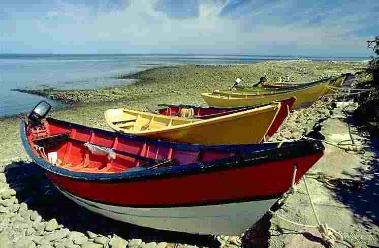 Fishboat.jpg