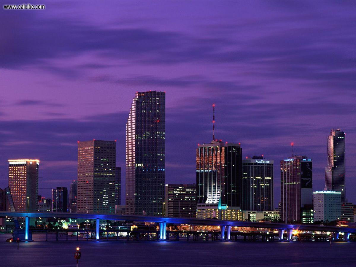MiamiNightsFlorida.jpg