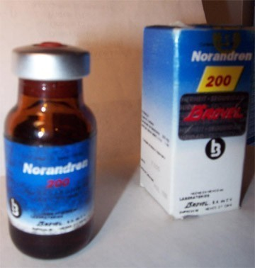 norandren200 - brovel (mexico).jpg