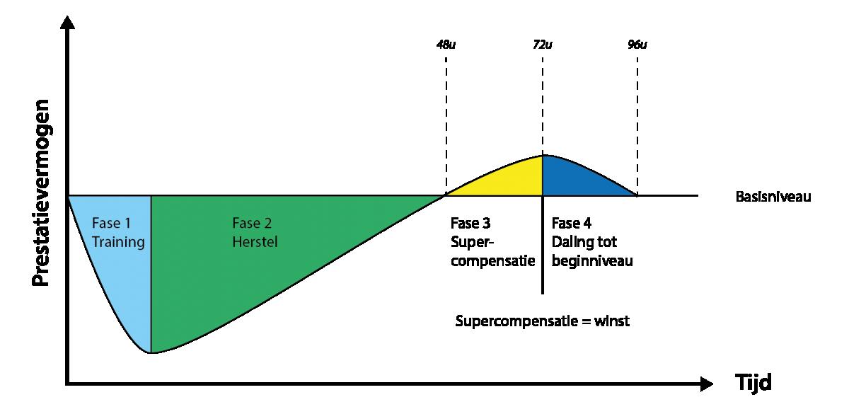 Supercompensatie_diagram_transparant_Tekengebied 1.png