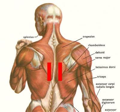 pijn in middenrug rechts